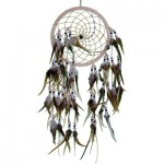 Wood Whispers Dream Catcher